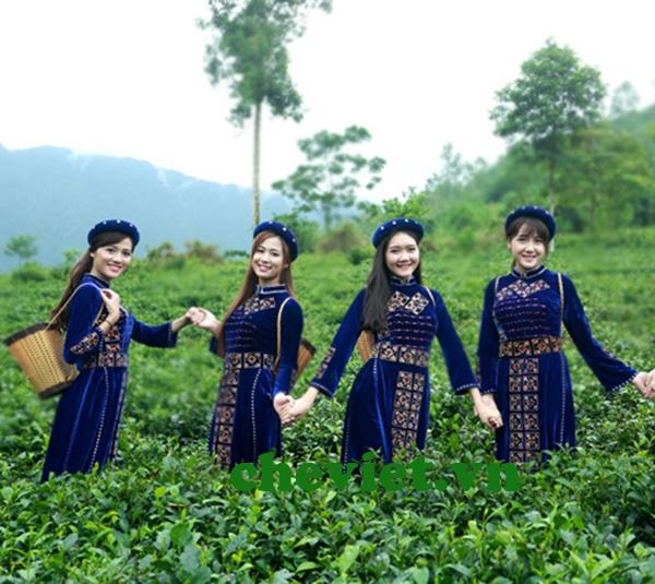 Cách nâng cao giá trị sản phẩm chè Thái Nguyên