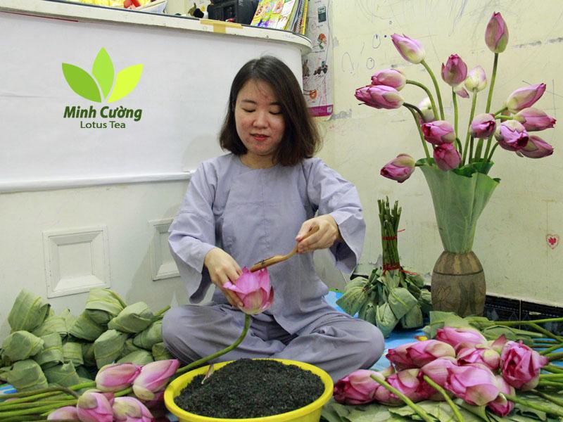 Trà sen Minh Cường ướp chục ngàn bông sen mỗi mùa