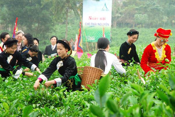 Xuân Trà trong thơ Hồ Chí Minh
