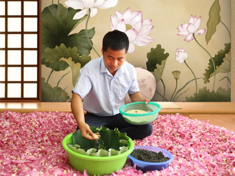 Ướp trà sen là một nghệ thuật với nhiều bí quyết mật truyền do người thợ Trà sen Minh Cường nắm giữ…