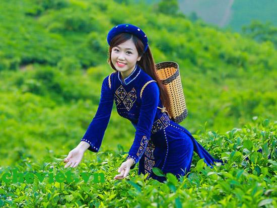 Thị trường chè Thái Nguyên
